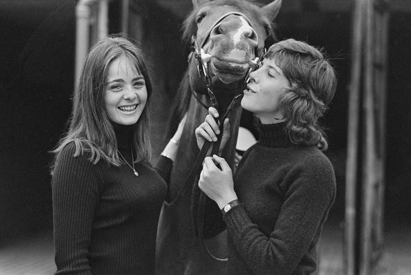 World Wildlife Fund「From Land's End to John O'Groats On Horseback」:写真・画像(16)[壁紙.com]