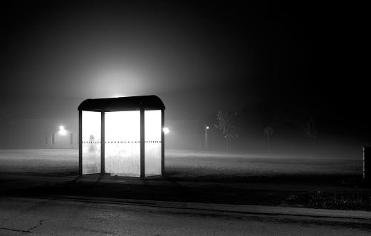 Fog「Empty Bus Stop Near Foggy Park at Night」:スマホ壁紙(5)