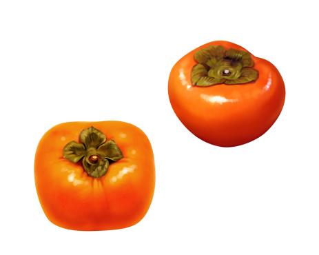 柿「Persimmons」:スマホ壁紙(3)