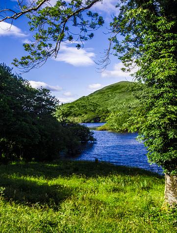 The Nature Conservancy「Killarney, Ireland」:スマホ壁紙(11)