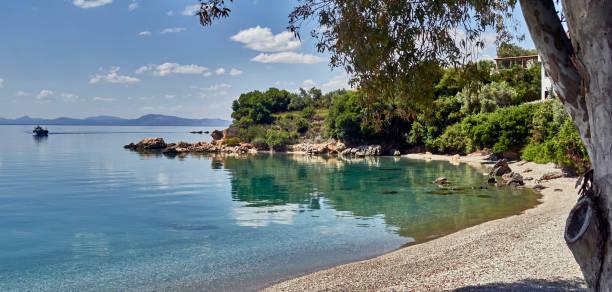 A beach along the Aegean sea in the Pagasitikos gulf near Horto:スマホ壁紙(壁紙.com)