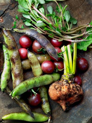 Plant Bulb「Fresh vegetables on table」:スマホ壁紙(6)