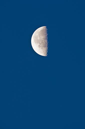 月「Half moon with lunar crater in the morning」:スマホ壁紙(19)