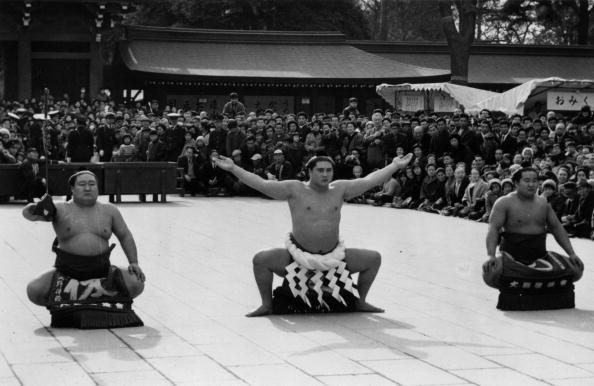 大鵬 幸喜「Sumo Homage」:写真・画像(1)[壁紙.com]