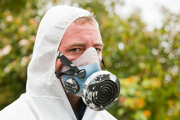Concepts「A specialist asbestos removal company removing asbestos from a shed roof of a house in Ambleside, Cumbria, UK.」:写真・画像(16)[壁紙.com]