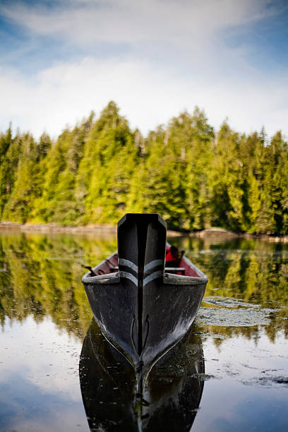 A canoe, carved with the traditions of the native peoples of Vancouver Island, in a small inlet near Tofino.:スマホ壁紙(壁紙.com)