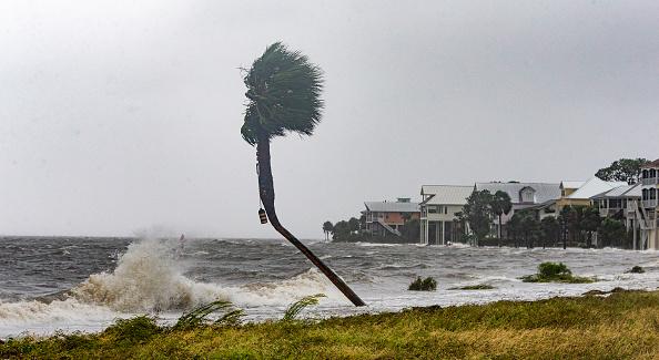 Mark Wallheiser「Hurricane Michael Slams Into Florida's Panhandle Region」:写真・画像(17)[壁紙.com]