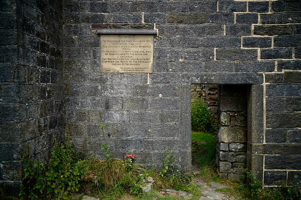 薔薇「The Bicentenary Of The Birth Of Emily Bronte」:写真・画像(14)[壁紙.com]