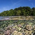 Guadalcanal Island壁紙の画像(壁紙.com)