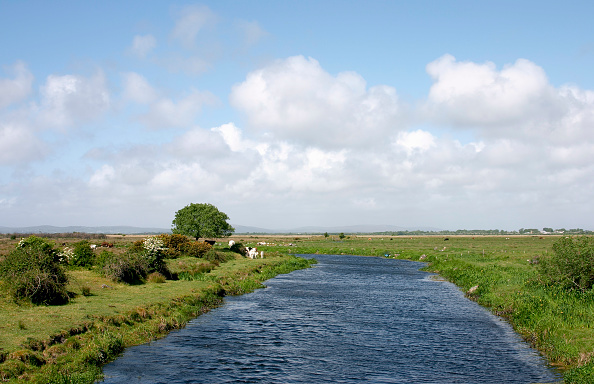 Grass「River Clare passing through fields, Co Galway, Ireland」:写真・画像(15)[壁紙.com]