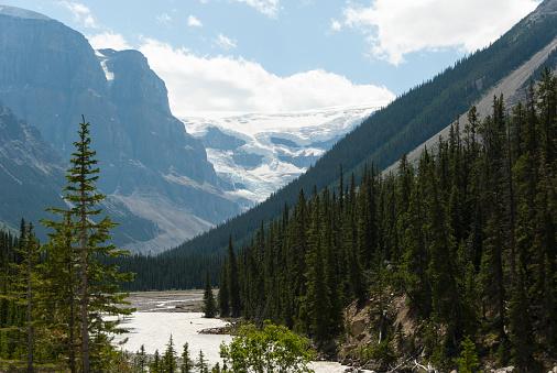 アサバスカ山「Mount Athabasca with Sunwapta River」:スマホ壁紙(17)