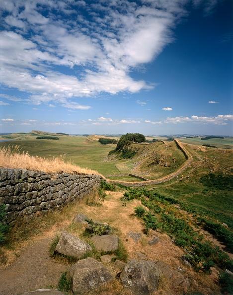 Bracken「Hadrians Wall」:写真・画像(11)[壁紙.com]