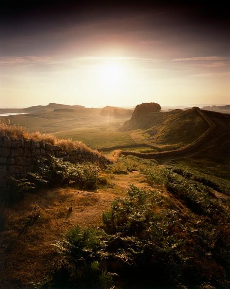 Bracken「Hadrians Wall」:写真・画像(12)[壁紙.com]