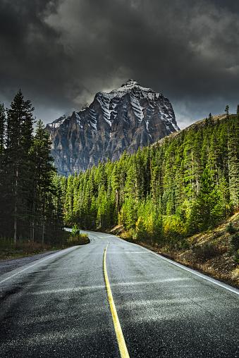 Treelined「Road towards mountains, Banff, Alberta, Canada」:スマホ壁紙(2)