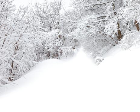 Snowdrift「Winter」:スマホ壁紙(1)
