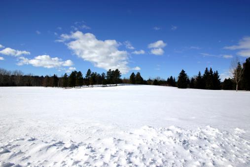 Snowdrift「Winter # 1」:スマホ壁紙(17)