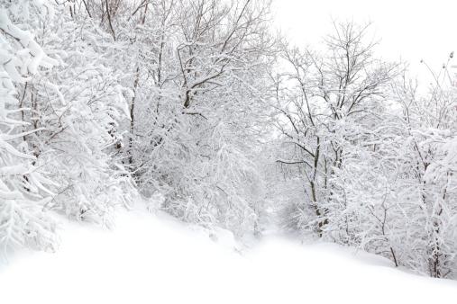 Snowdrift「Winter」:スマホ壁紙(0)