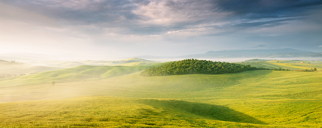 Agricultural Field「Lush green panoramic landscape of Tuscany」:スマホ壁紙(17)
