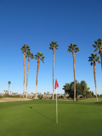 Sand Trap「Lush green golf course in the Palm Springs desert」:スマホ壁紙(14)