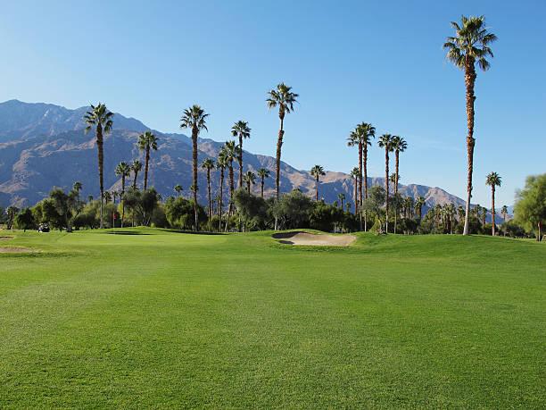 Lush green golf course in the Palm Springs desert:スマホ壁紙(壁紙.com)