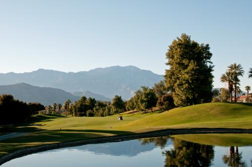 Water Hazard「Lush green golf course in the Palm Springs desert」:スマホ壁紙(16)