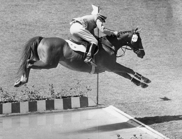 Horse「JUMPING D''INZEOa」:写真・画像(9)[壁紙.com]