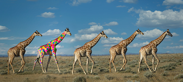 Walking「Giraffe with colorful spots」:スマホ壁紙(5)