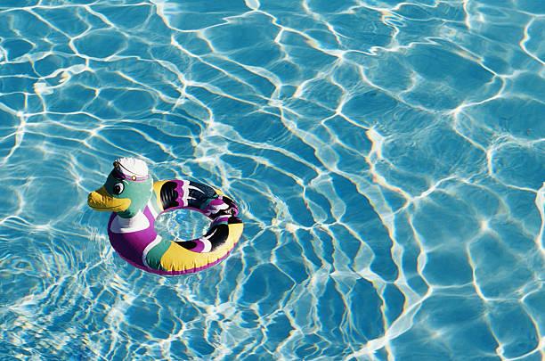 Duck shaped inner tube floating in pool:スマホ壁紙(壁紙.com)