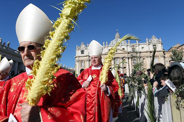 Religious Mass「Pope Attends Palm Sunday」:写真・画像(8)[壁紙.com]