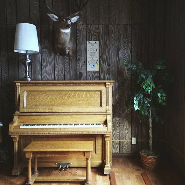 Old Vintage Piano and Taxidermy Animal Head in Wooden Cabin:スマホ壁紙(壁紙.com)