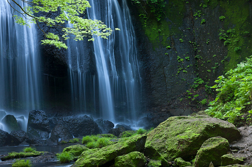 Japanese Maple「Japanse Waterfall Landscape」:スマホ壁紙(9)