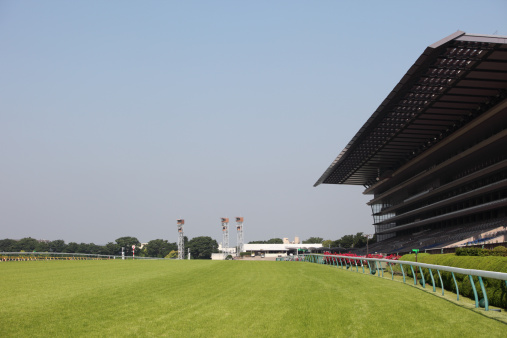 Flat Racing「Wide-view of empty horse racing track with big stands」:スマホ壁紙(10)