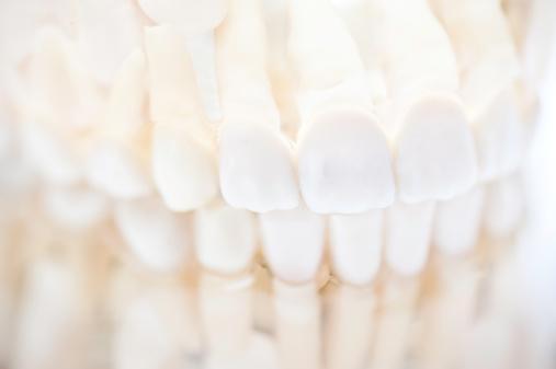 Restoring「set of white teeth dentures」:スマホ壁紙(3)
