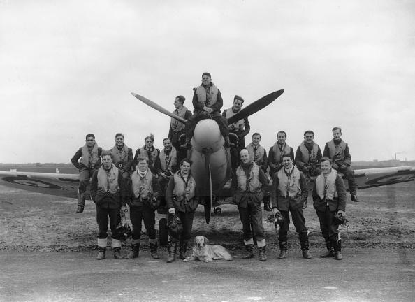 キャラクター「Fighter Squadron」:写真・画像(11)[壁紙.com]