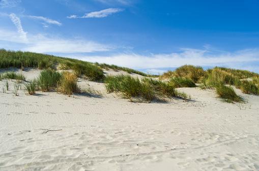 Lower Saxony「Germany, Lower Saxony, East Frisian Island, Juist, dune landscape」:スマホ壁紙(2)