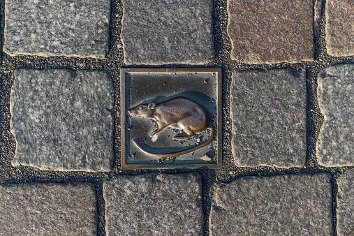 Fairy Tale「Germany, Lower Saxony, Hameln, cobblestone with rat」:スマホ壁紙(3)