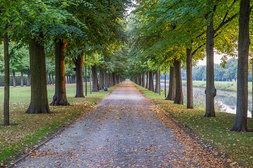 Public Park「Germany, Lower Saxony, Hanover, Herrenhaeuser Gaerten, alley in autumn」:スマホ壁紙(16)