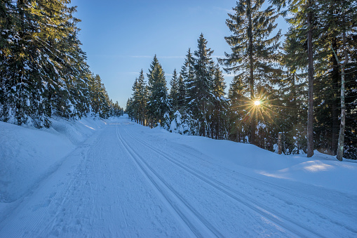 ウィンタースポーツ「Germany, Lower Saxony, Harz National Park, cross-country ski run Auf dem Acker in the evening」:スマホ壁紙(17)