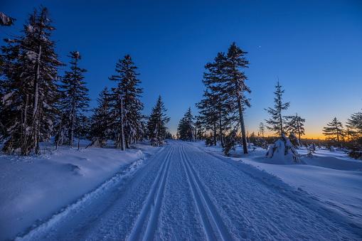 スキー場「Germany, Lower Saxony, Harz National Park, cross-country ski run Auf dem Acker in the evening」:スマホ壁紙(14)