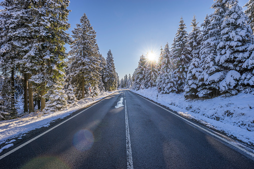 Empty Road「Germany, Lower Saxony, Harz National Park, country road in the morning」:スマホ壁紙(8)