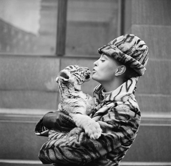 Coat - Garment「Tiger Lady」:写真・画像(16)[壁紙.com]