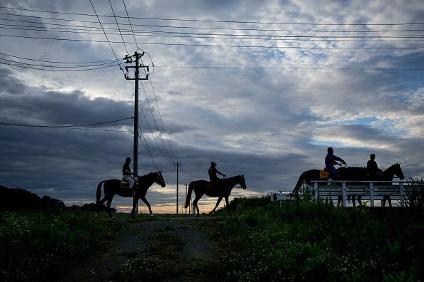 戦国武将「The Samurai Of Fukushima」:写真・画像(11)[壁紙.com]