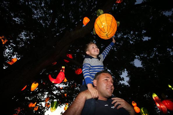 Carrot「2019 Auckland Lantern Festival」:写真・画像(19)[壁紙.com]