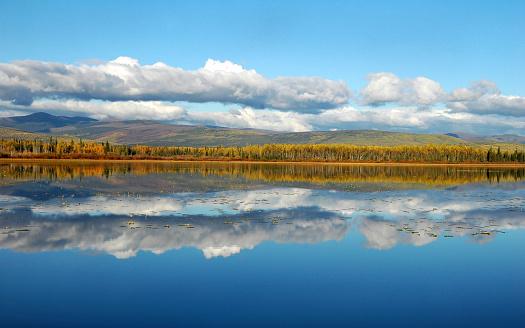Yukon「Cloud and tree reflections,Gravel Lake,Territory,Canada」:スマホ壁紙(18)