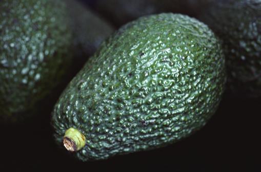 Avocado「Avocados」:スマホ壁紙(7)