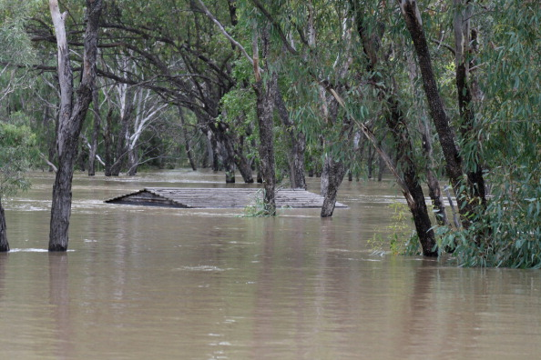 Chinchilla - Rodent「Death Toll Rises As Queensland Flood Disaster Continues」:写真・画像(18)[壁紙.com]