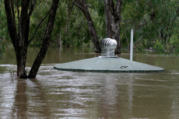 Chinchilla - Rodent「Death Toll Rises As Queensland Flood Disaster Continues」:写真・画像(6)[壁紙.com]