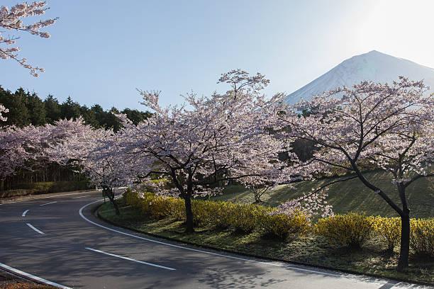 春のドライブのまとめ:2012年04月24日(壁紙.com)