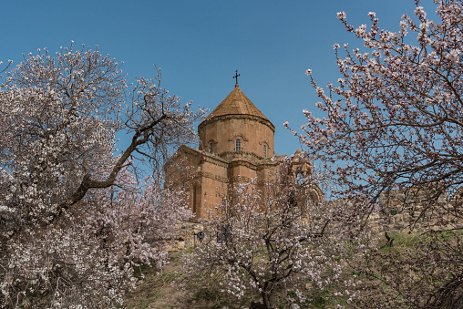 Akdamar Island「Akdamar church in spring, blossoming almond trees, Akdamar island, Lake Van, Eastern Turkey」:スマホ壁紙(10)