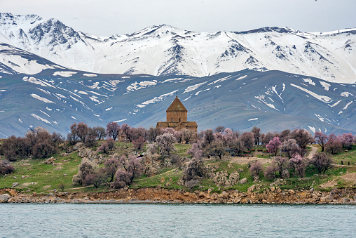 Akdamar Island「Akdamar church in spring, blossoming almond trees, Akdamar island, Lake Van, Eastern Turkey」:スマホ壁紙(19)